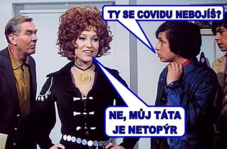 tatanetopyr1.jpg